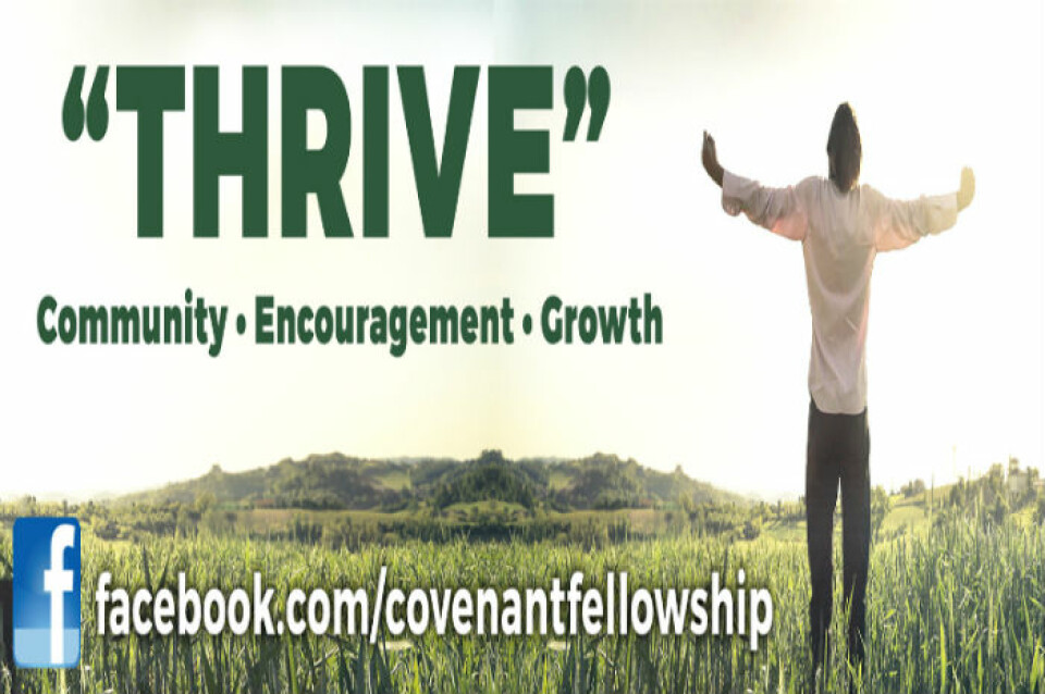 Thrive Small Group Study