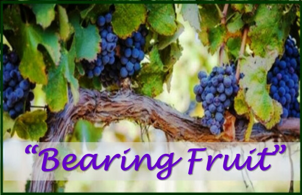 Series: Bearing Fruit
